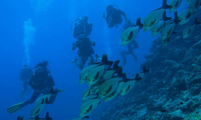 Vabbinfaru-Facilities-PADI-Gold-Pam-5star-Resort-Dive-Centre.jpg